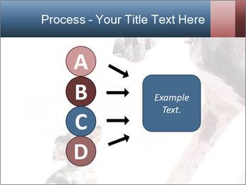 0000073586 PowerPoint Templates - Slide 94