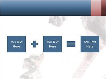 0000073586 PowerPoint Templates - Slide 95