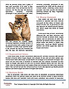 0000073586 Word Templates - Page 4