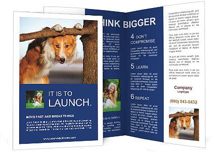 0000073595 Brochure Templates