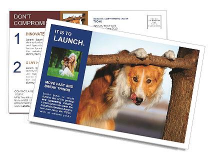 0000073595 Postcard Template