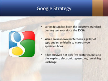 0000073595 PowerPoint Template - Slide 10