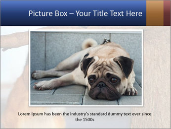 0000073595 PowerPoint Template - Slide 16