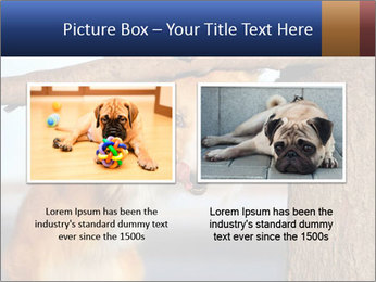 0000073595 PowerPoint Template - Slide 18