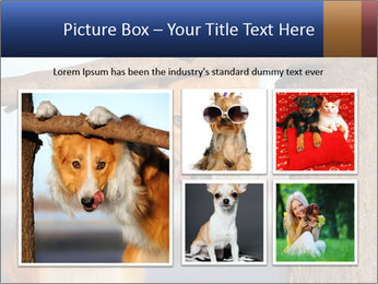 0000073595 PowerPoint Template - Slide 19