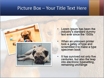 0000073595 PowerPoint Template - Slide 20