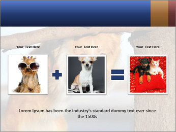 0000073595 PowerPoint Template - Slide 22