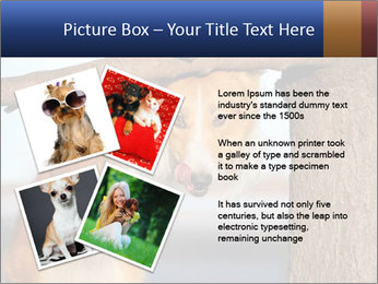 0000073595 PowerPoint Template - Slide 23