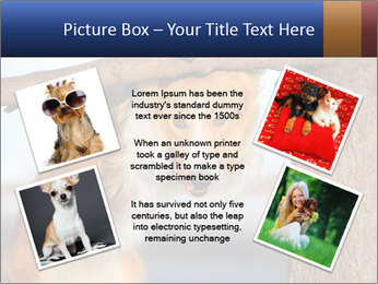 0000073595 PowerPoint Template - Slide 24
