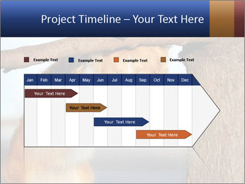 0000073595 PowerPoint Template - Slide 25