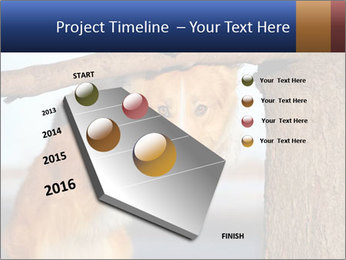 0000073595 PowerPoint Template - Slide 26
