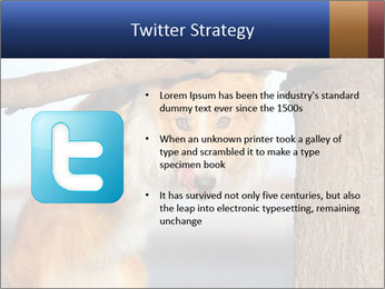 0000073595 PowerPoint Template - Slide 9