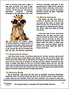 0000073595 Word Templates - Page 4