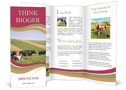 0000073598 Brochure Template