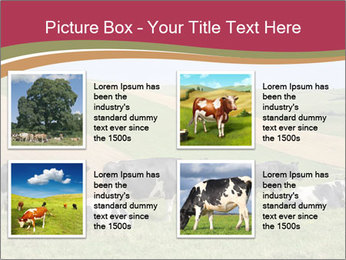 0000073598 PowerPoint Templates - Slide 14