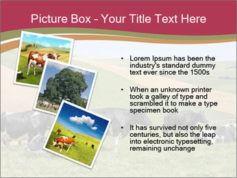 0000073598 PowerPoint Templates - Slide 17