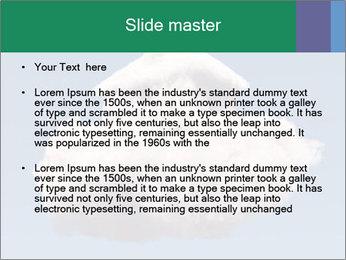 0000073601 PowerPoint Templates - Slide 2