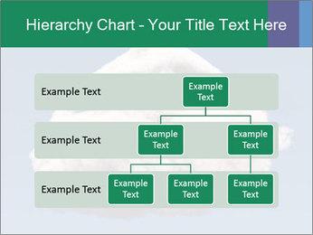 0000073601 PowerPoint Templates - Slide 67