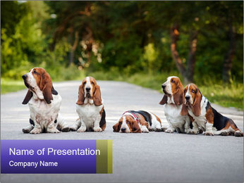 0000073609 PowerPoint Templates - Slide 1