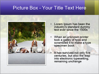 0000073609 PowerPoint Templates - Slide 13