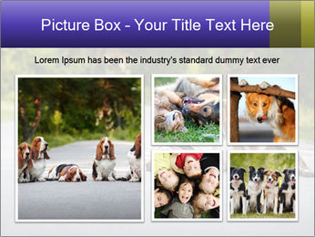 0000073609 PowerPoint Templates - Slide 19