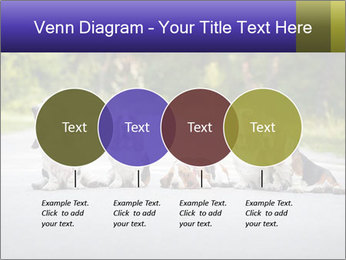 0000073609 PowerPoint Templates - Slide 32
