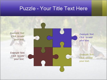 0000073609 PowerPoint Templates - Slide 43