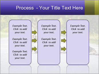 0000073609 PowerPoint Templates - Slide 86