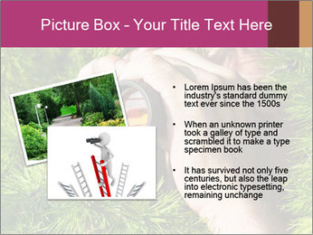 0000073614 PowerPoint Templates - Slide 20
