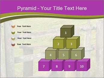 0000073617 PowerPoint Templates - Slide 31