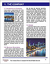 0000073618 Word Template - Page 3