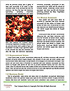 0000073622 Word Templates - Page 4