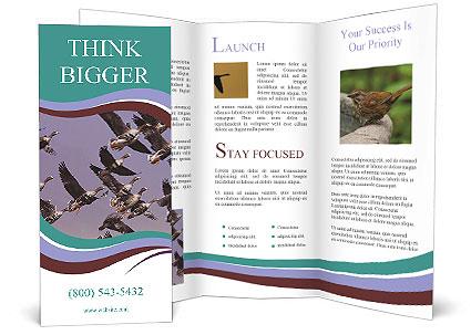 0000073629 Brochure Template
