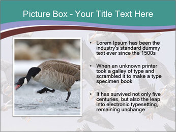 0000073629 PowerPoint Template - Slide 13