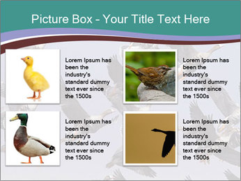 0000073629 PowerPoint Template - Slide 14