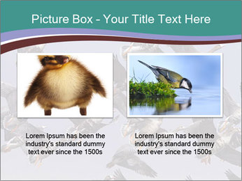 0000073629 PowerPoint Template - Slide 18