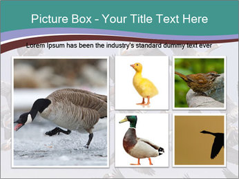 0000073629 PowerPoint Template - Slide 19