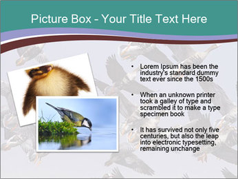 0000073629 PowerPoint Template - Slide 20