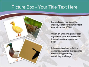 0000073629 PowerPoint Template - Slide 23