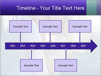 0000073633 PowerPoint Template - Slide 28