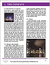 0000073637 Word Template - Page 3