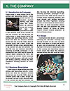 0000073648 Word Template - Page 3