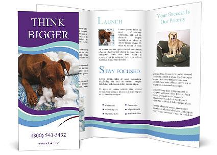 0000073653 Brochure Template