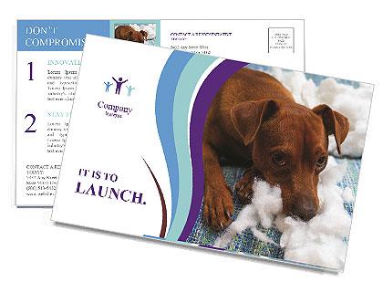 0000073653 Postcard Templates