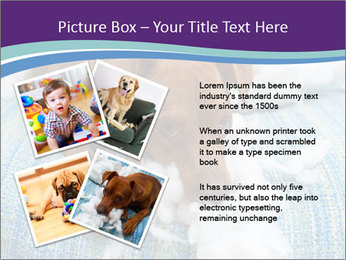 0000073653 PowerPoint Template - Slide 23