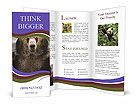 0000073656 Brochure Templates
