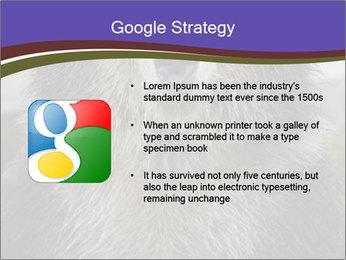 0000073656 PowerPoint Templates - Slide 10