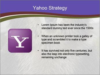 0000073656 PowerPoint Templates - Slide 11