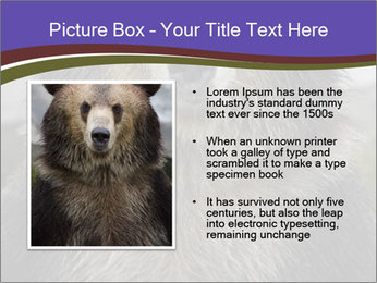 0000073656 PowerPoint Template - Slide 13