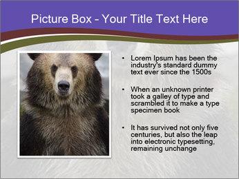 0000073656 PowerPoint Templates - Slide 13